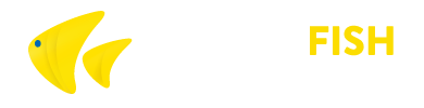 Yellowfish Transfers logo